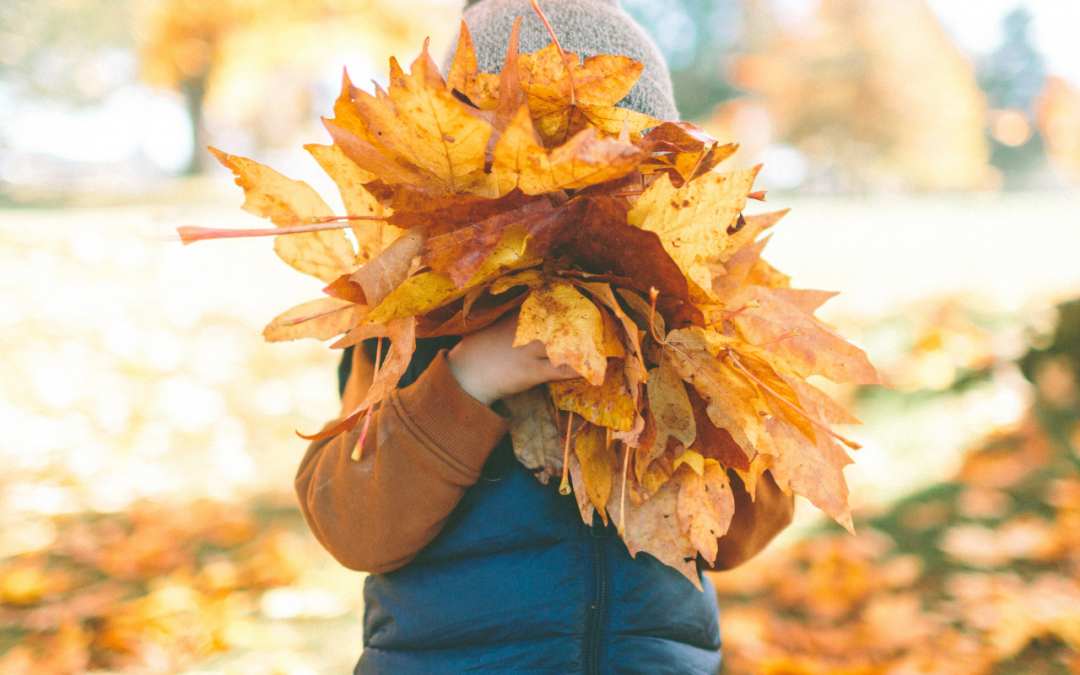 5 tips on staying pain free this autumn